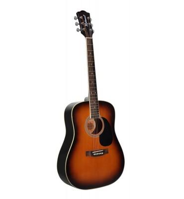 Richwood RD-10-SB chitarra acustica sunburst